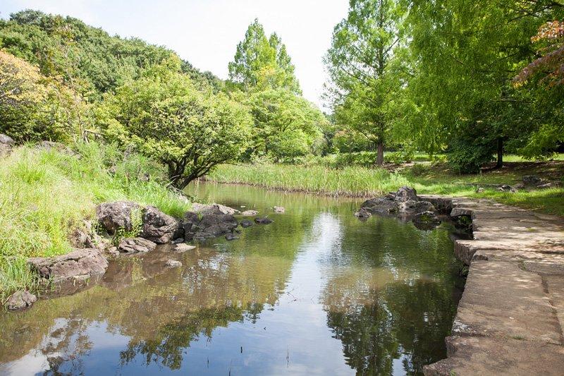 ホタルの名所として知られる「泉谷公園」