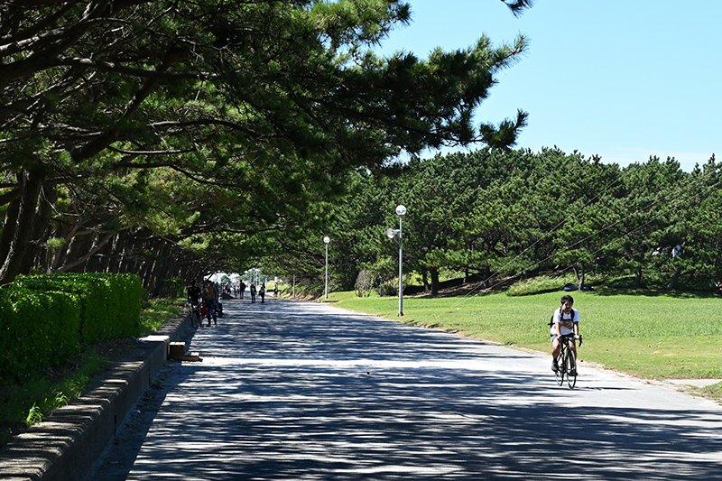 教育環境も充実、生活環境も良好!『シティテラス稲毛海岸』周辺の子育て環境をご紹介します!