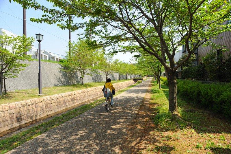 「泉谷公園」から「有吉公園」を通って「大百池公園」まで続く「おゆみの道」
