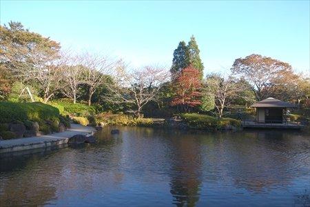 柏の葉公園 庭園
