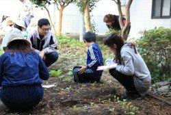第3回:KSEL主催の「理科の体験農園」に参加してきました!(2015/10取材)