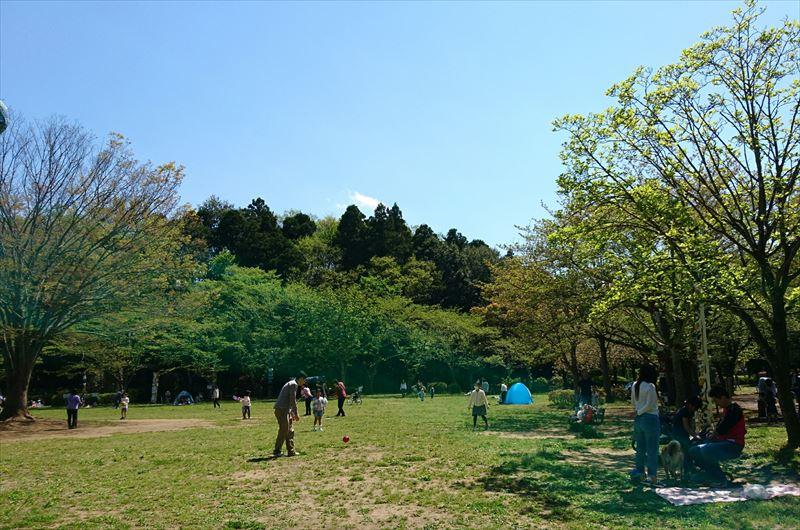 流山市総合運動公園 ピクニック広場