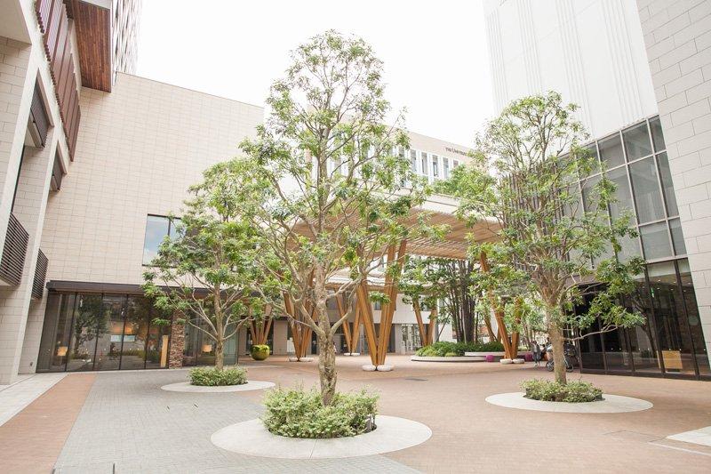 エネルギ―管理を担う「柏の葉ゲートスクエア」。「柏の葉スマートシティ」の中核を担う施設だ。