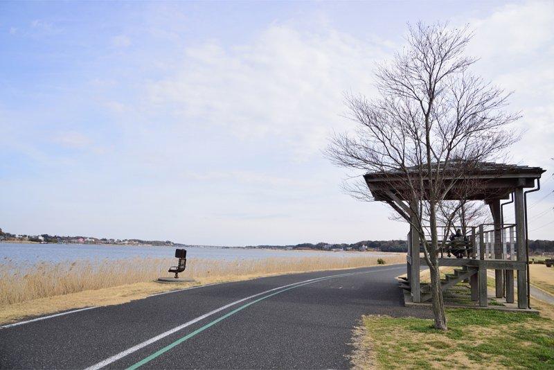 手賀沼サイクリングロード