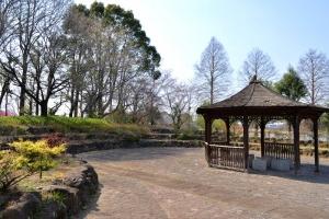 季節ごとの自然や遊具の楽しみが豊富な「柏の葉公園」に行ってきました!